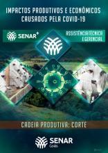 Impactos produtivos e econômicos causados pela Covid-19 - Cadeia produtiva: Corte